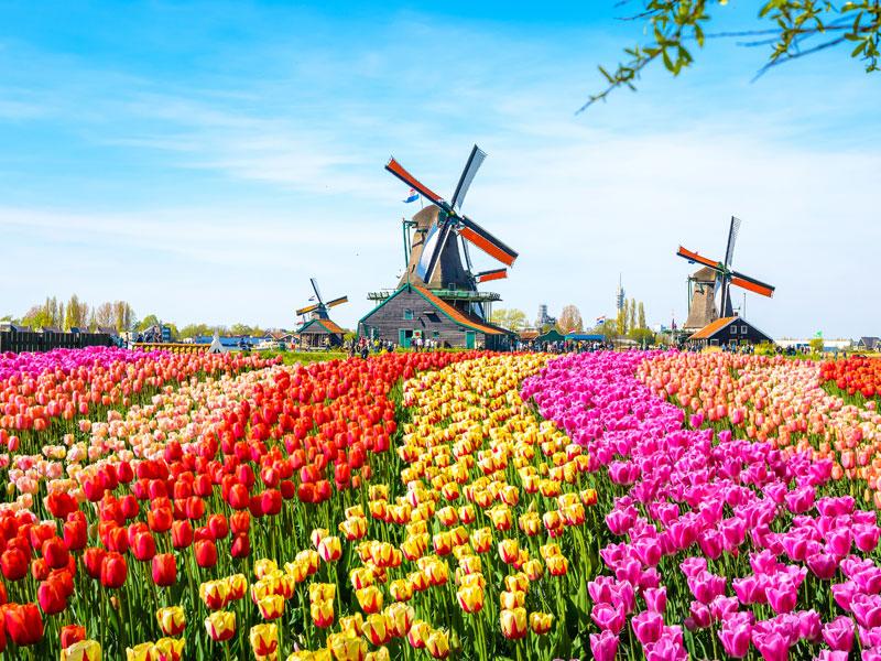 Samenwerking hostelketen Stayokay Nederland